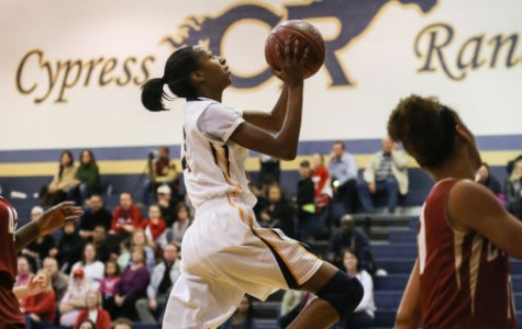 Hoop Stardom: A Closer Look into the Mind of DiDi Richards