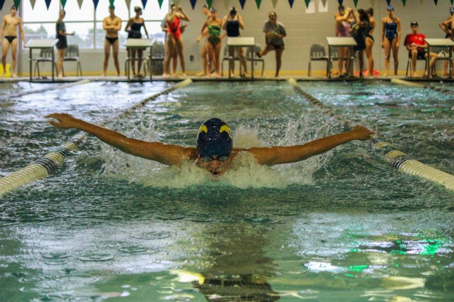 Team+Spotlight%3A+Mustang+Swimming+and+Diving