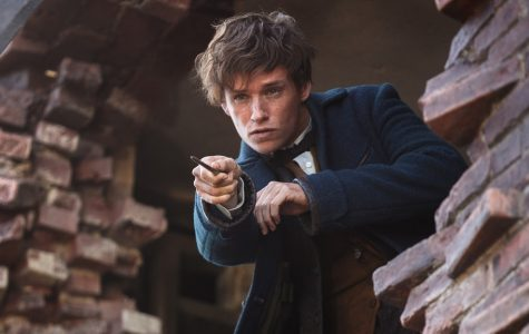 Why You Should Watch Fantastic Beasts: The Crimes of Grindelwald (Mild Spoilers)